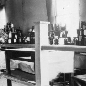 General canning exhibit, coastal plain fruit, Tarboro, 1929