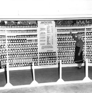 Display of canned fruits and vegetables to supply a family of five during non-productive months, Moore county, October 1956.