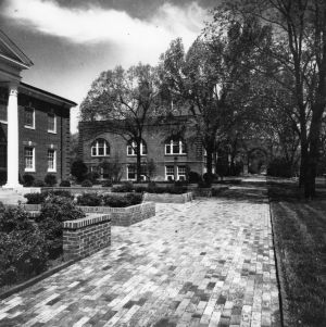Brick walkway in front of Alumni Memorial Building and Holladay Hall, North Carolina State College, April 1959.