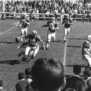 North Carolina State University player tackling University of North Carolina quarterback. For the first time in 11 years the two teams played in Riddick Stadium.