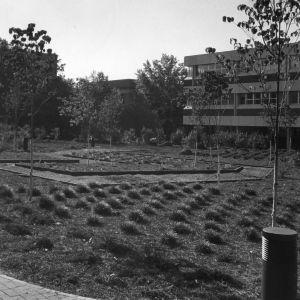 M. E. Gardner Arboretum with Burlington Engineering Laboratories in background