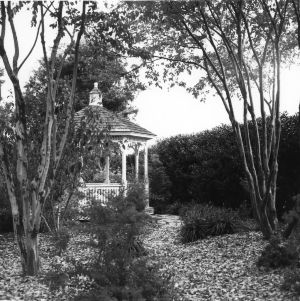 Victorian-style gazebo in the Klein-Pringle White Garden at J. C. Raulston Arboretum, North Carolina State University.