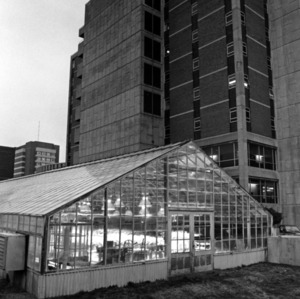 Greenhouse behind Cox Hall