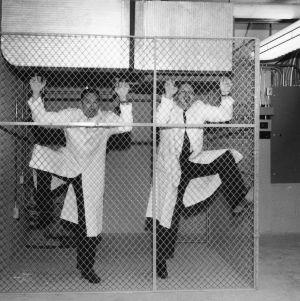 """Textile chemists in captivity."""