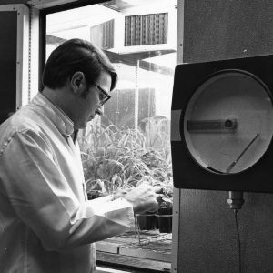 Phytotron, man working with plants