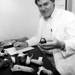 Dr. Major M. Goodman with corn research samples