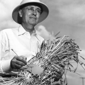 Dr. Gordon K. Middleton with wheat bushel