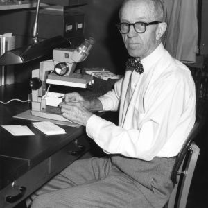 Entomology professor Theodore B. Mitchell at microscope