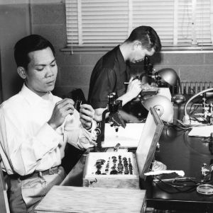 Filipino student in entomology lab