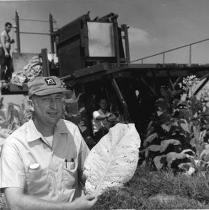 Dr. William E. Splinter in field with tobacco harvester