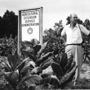 Two men standing beside Agricultural Extension Service Demonstration sign in tobacco field, August 1963.