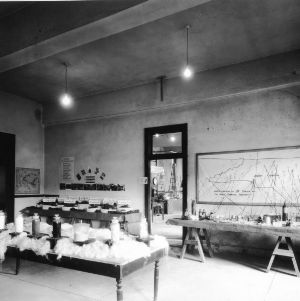Chemical Engineering Department, undated