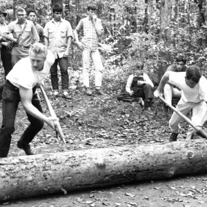 Forestry students rolling log, 1960s?