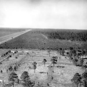Bird's-eye view of Hofmann Forest