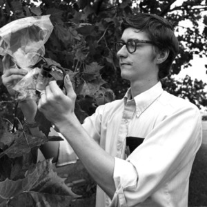 Forestry genetics, Summer Session, 1972