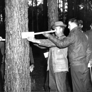 North Carolina State College Extension forestry specialist at a forestry field demonstration coaches a forest owner in the use of a tree scale stick to determine tree volumen and value, 195-.