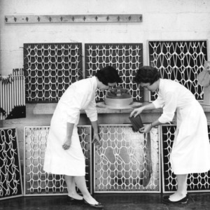 Two researchers in laboratory at North Carolina State College School of Textiles examining hoisery.
