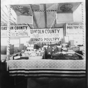 Lincoln County exhibit at the North Carolina State Fair demonstrating feeding poultry