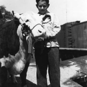 Walter Lowery, Pasquotank County, North Carolina, with grand champion calf, 1945