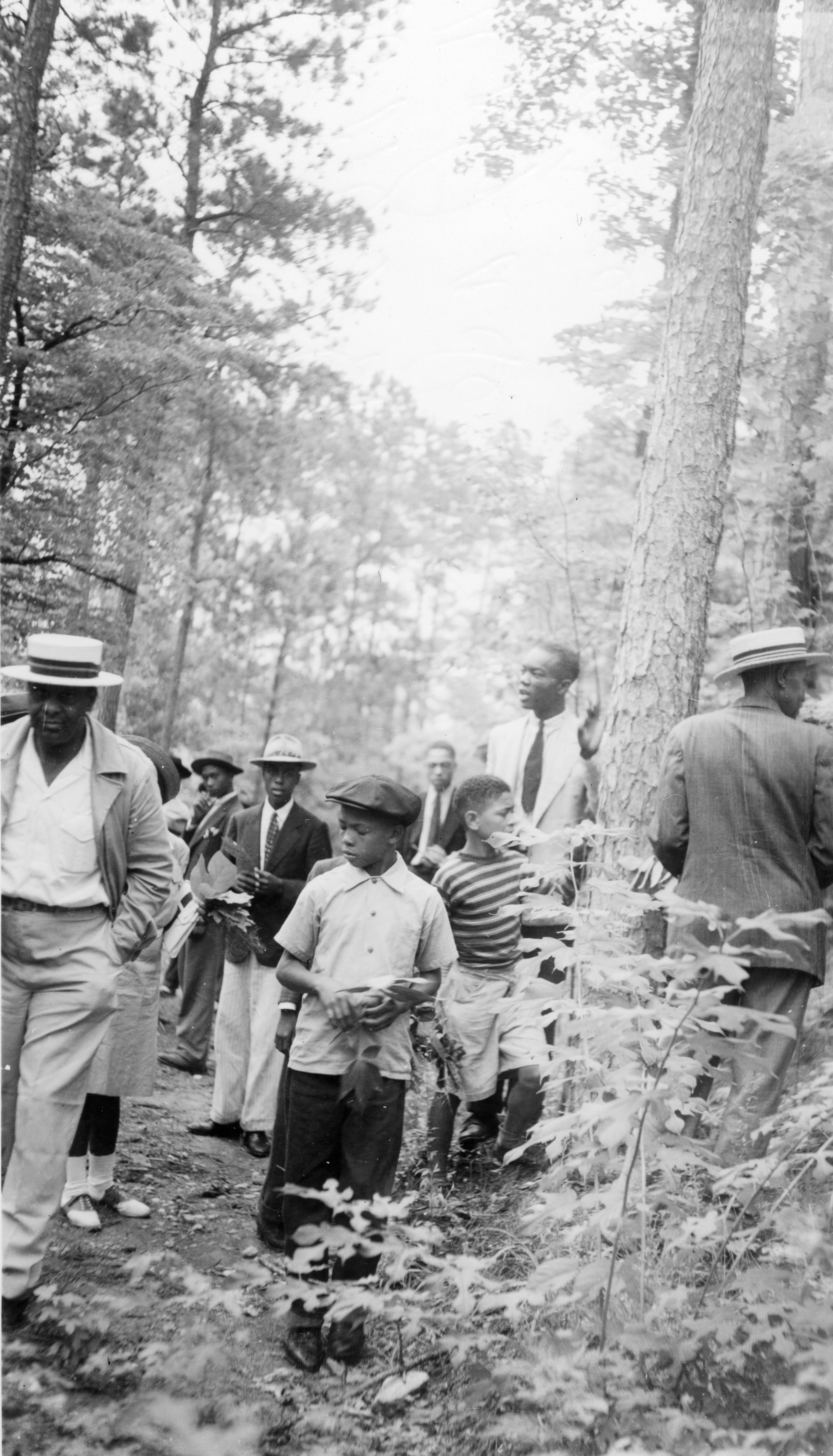 4-H club members searching the woods for leaf samples to identify trees in Wake County, July 14-17, 1941