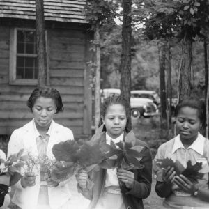 African American girls with different types of tree leaves, at Camp Whispering Pines