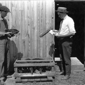 Lawrence Hawkins, North Carolina poultry club member, and R.E. Lawrence, county agent, inspecting a fattening demonstration, September 14, 1923.