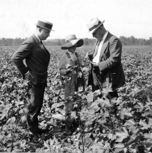 R. W. Graham and Frank H. Jeter explaining how to control boll-rot on cotton to club member