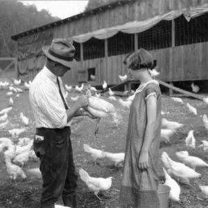 County agent S. A. Ammons inspecting club member Ruth O'Kelly's poultry in Transylvania County, NC