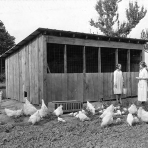 Home demonstration agent Mrs. Redfearn inspecting club member Hazel Tucker's flock of White Orpingtons, Anson County, N.C., May 24, 1924.