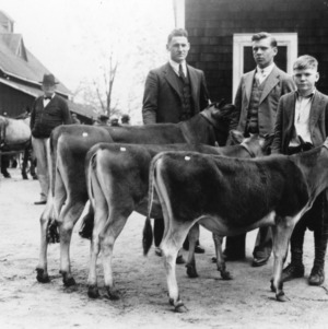 Mecklinburg group of calves bough at the 4-H sale and distribution held in Statesville on April 21, 1934