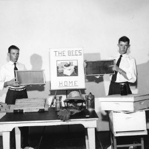 Two 4-H club boys demonstrating beekeeping