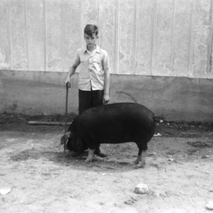 4-H club boy with pig at Rocky Mount Fat Stock Show, Rocky Mount (Nash County), North Carolina, 1945