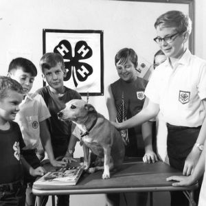 4-H club members participating in dog obedience project, 1971