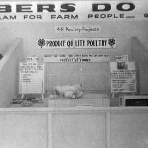 Poultry display, North Carolina State Fair, 1938