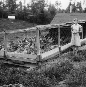4-H club girl standing next to poultry house