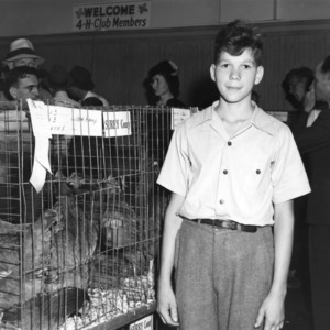 4-H club boy standing in front of a Surrey County, North Carolina, poultry display