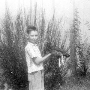 4-H club boy holding chicken, Moore County, North Carolina, 1953