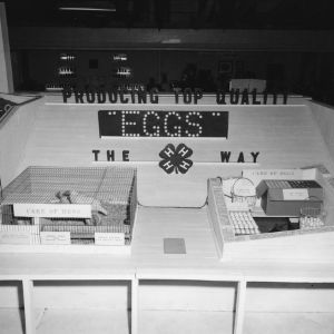 Chatham County 4-H Club egg production display, North Carolina State Fair, 1957