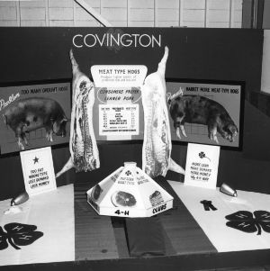4-H exhibit at the Alabama State Fair demonstrating the benefits of leaner hogs