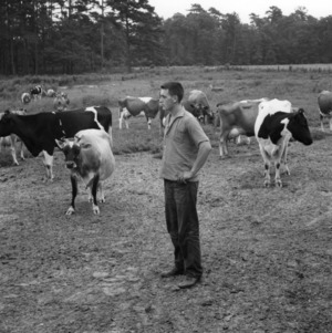 Boy participating in the International Farm Youth Exchange program examining cows in Craven County, North Carolina
