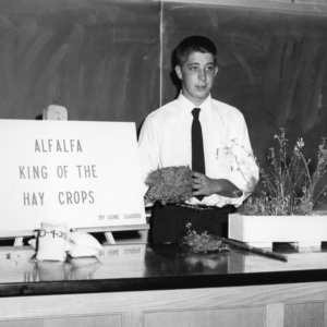 Alfalfa, King of the Hay Crops exhibit during North Carolina State 4-H demonstration competition