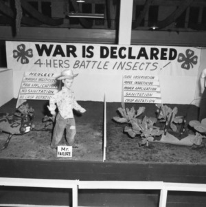 "Pitt County, North Carolina, 4-H Club exhibit, ""War is Declared, 4-Hers Battle Insects!"" at North Carolina State Fair, 1957"