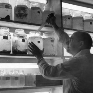 Genetics laboratory testing