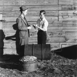 Two unidentified men examining peanuts as a part of a 4-H club peanut project in Cumberland County, North Carolina
