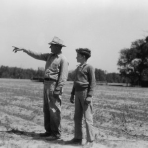 Unidentified man and boy looking over a field as part of a 4-H club peanut project in Chowan County, North Carolina