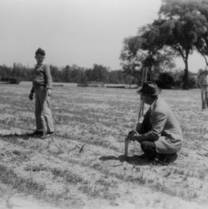 Unidentified man and boy work in a field as part of a 4-H club peanut project in Chowan County, North Carolina