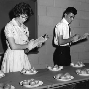 4-H club girl and boy judge potatoes and onions during North Carolina State 4-H Club Week