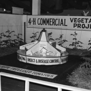 4-H club commercial vegetable project exhibit at North Carolina State Fair, 1959