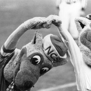 Mr. and Ms. Wuf dancing at homecoming game vs. UNC-Charlotte
