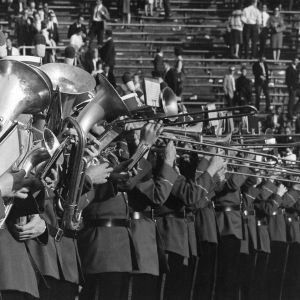 Horn section of the marching band